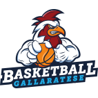 basket gallarate sponsor